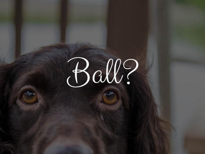 Ball?!